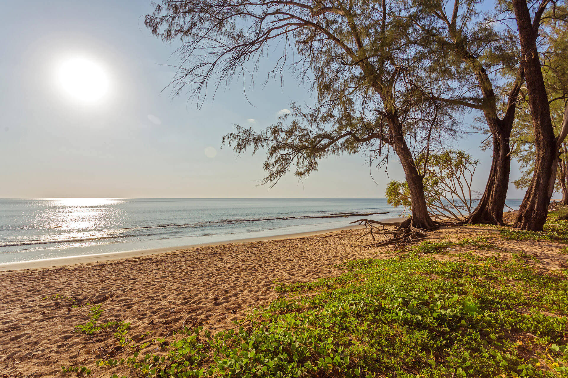 Maikhao beach - Top 3 Secret Beaches In Phuket
