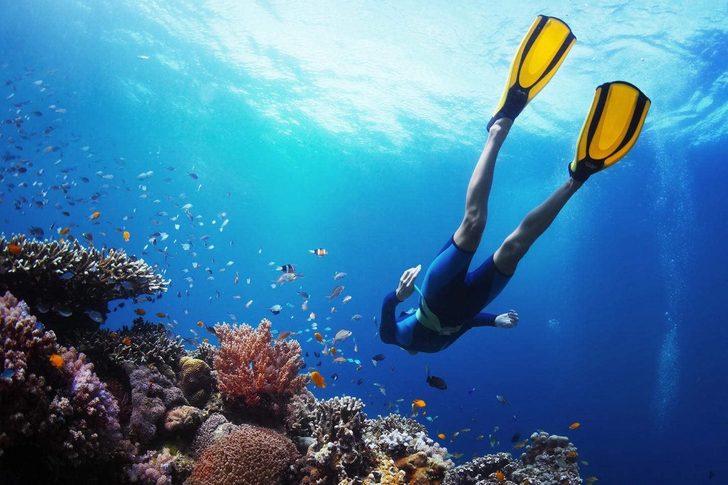 Diving in Phuket, Discover Scuba Diving Phuket