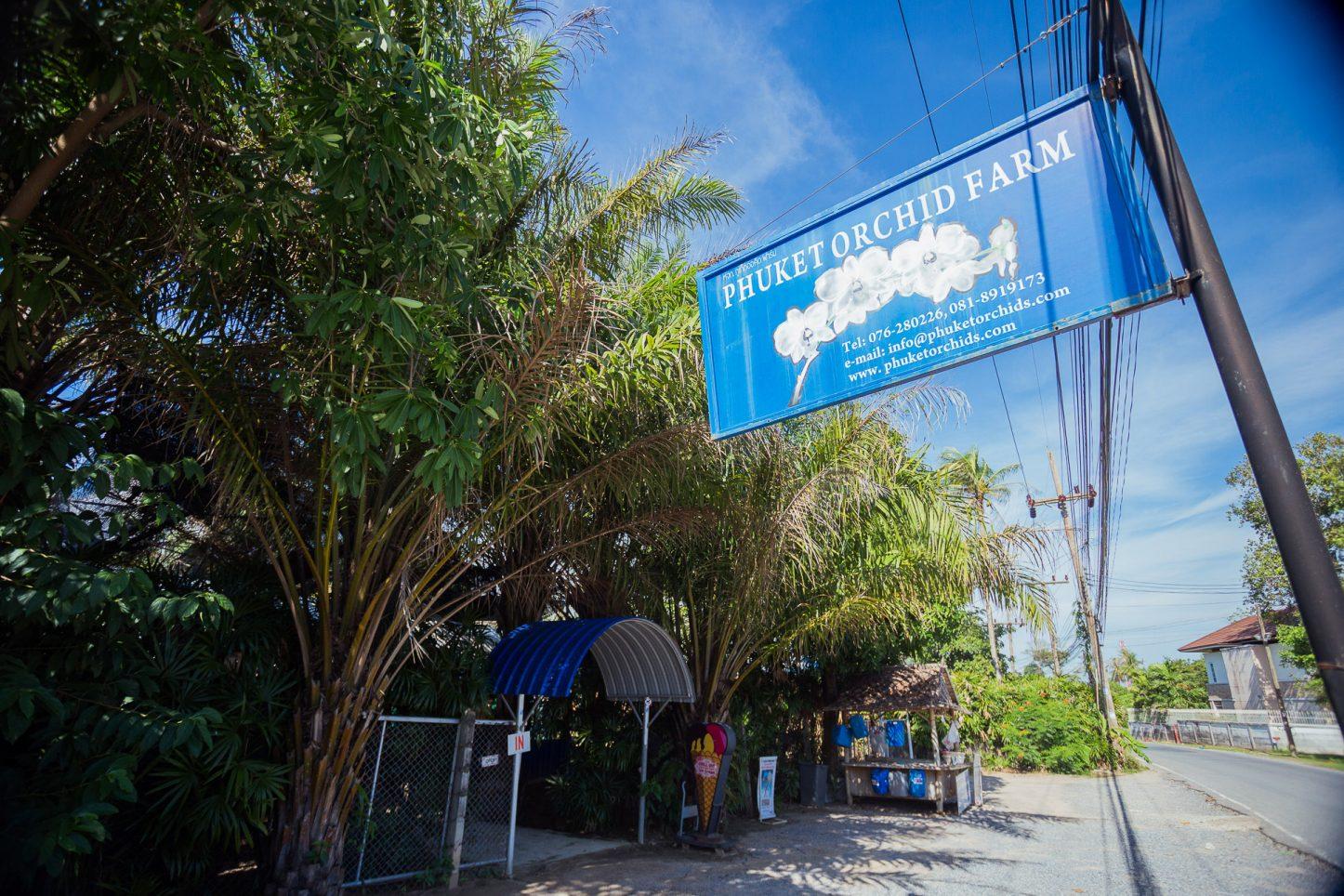 Phuket Orchid Farm | Attractions Near Kata Rocks Resort Phuket