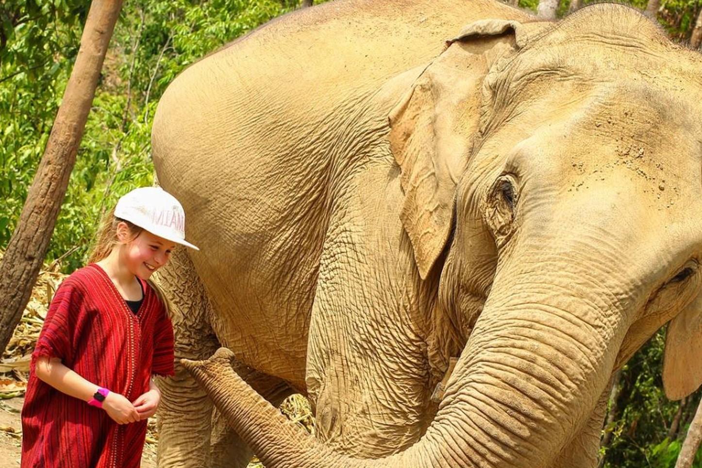 Elephant Sanctuaries Kata Rocks Phuket