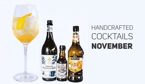 Cocktail of the month - November